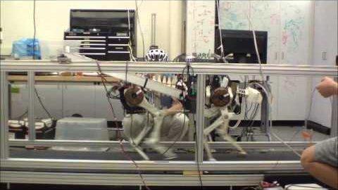 Roboter Cheetah zum ersten Mal auf dem Laufband