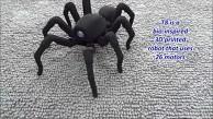 Spinnenroboter Robugtix T8