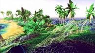 Neue Techdemo Island auf Nvidias Logan