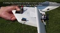 Daler-Roboter für Land und Luft