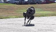 Laufroboter Wildcat