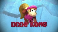 Donkey Kong Country Tropical Freeze - Dixie Kong