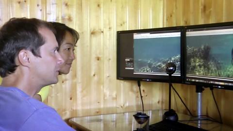 Eye Mirror für 360-Grad-Videos
