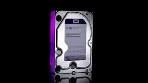WD Purple - die Überwachungsfestplatte