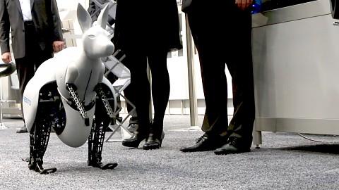 Festo zeigt bionisches Känguru