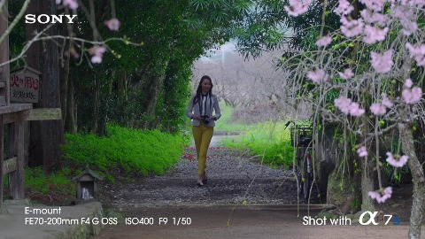 Bildbeispiele Von Der Sony Alpha 7s Video Golem De