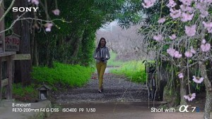 Bildbeispiele von der Sony Alpha 7S
