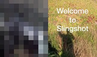 Slingshot - die Foto- und Videochat-App von Facebook