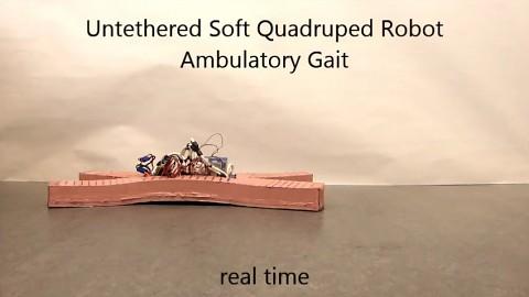 Verschiedene Gangarten des weichen Roboters