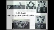 Modularer Schlangenroboter Rebis - Inobotics