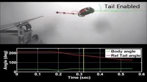 The Penn Jerboa hüpfender Roboter