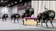 MIT - springender Roboterhund Cheetah