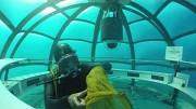 Aufbau von Nemo's Garden - Ocean Reef Group