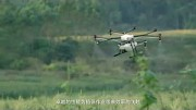 Landwirtschaftsdrohne MG-1 Agras - DJI