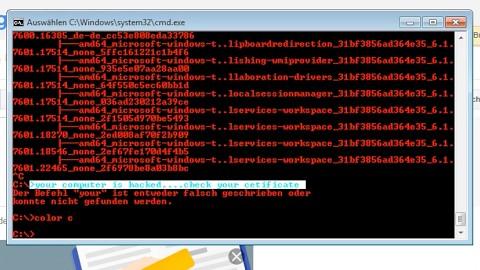 Windows-Trickbetrüger im Golem.de-Honigtopf