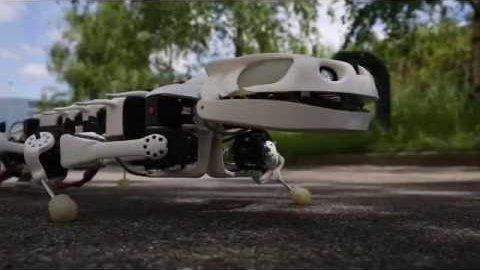 Robotischer Salamander Pleurobot - EPFL