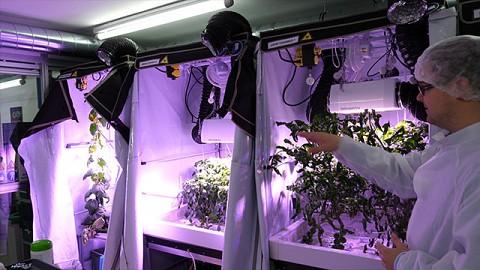 Eden ISS am DLR - Bericht