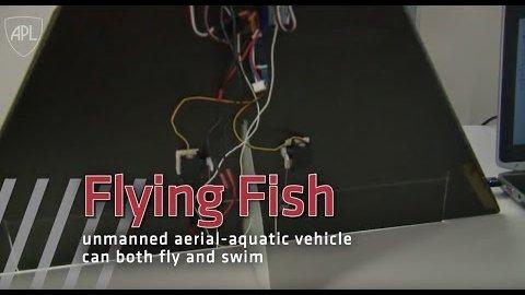 Flying Fish - Trailer