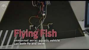 Flying Fish - Trailer
