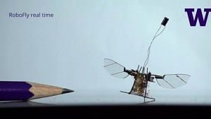 University of Washington stellt Robofly vor