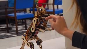 Roboterkatze Nybble - Crowdfunding-Trailer