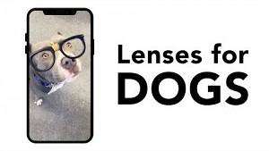 Snapchat führt Foto-Filter für Hunde ein