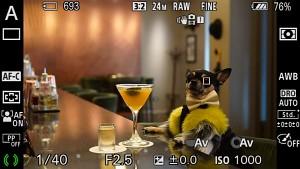 Sony zeigt Autofokus für Tieraugen (Herstellervideo)