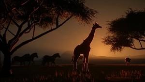 Planet Zoo - Trailer (Launch)