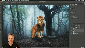Bilder in Adobe Photoshop angleichen - Tutorial