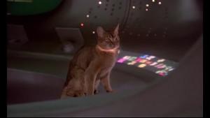 Die Katze aus dem Weltraum (1978) - Filmszene