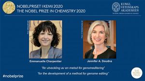 Nobelpreis 2020 in Chemie