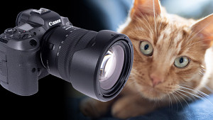 Canon EOS R5 - Test