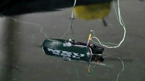 Fischroboter für die Gewässerüberwachung