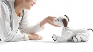 Sony aibo Hundetraining (Herstellervideo)