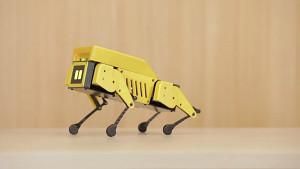 Mini Pupper - Trailer des Roboterhundes