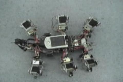Laufroboter Amos-WD06 in verschiedenen Experimenten