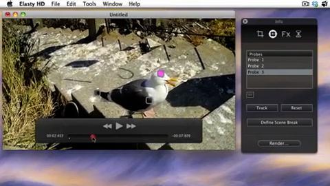 Creaceed Elasty HD 2.0 - Demo