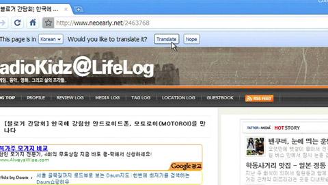Google Chrome 4.1 mit Übersetzungsfunktion
