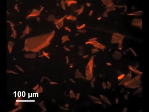 Papier aus Peptiden im Elektronenmikroskop