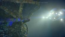 3D Mark 11 - Deep-Sea-Techdemo