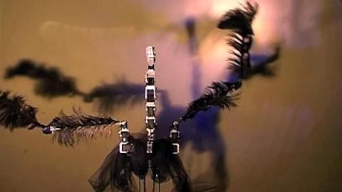 Ein Roboter tanzt Schwanensee