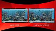 Vergleich zwischen AMD Brazos und Intel Pentium mit Demos im IE9 - Herstellervideo