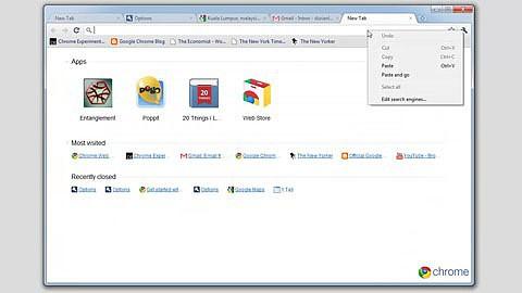 Google zeigt das neue Einstellungsmenü in Chrome 10