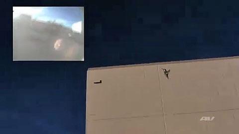 Drohne nach dem Vorbild eines Vogels - Aerovironment