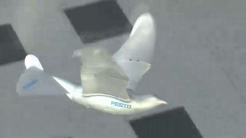 Festo - Smart Bird - Herstellervideo