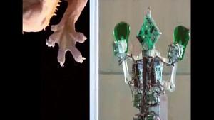 Roboter im Dienst des Menschen - Übersicht