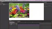 Adobe Edge Preview