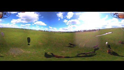 360-Grad-Video - Rohmaterial von Yellowbird - Herstellervideo