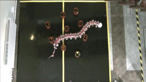 Roboterwurm windet sich durch Hindernisse