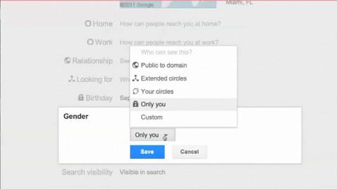 Google Plus - Frances Haugen über mehr Privatsphäre - Herstellervideo